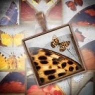 LÁMINA FOTOGRÁFICA CON 30 IMÁGENES 25x25mm Mariposas