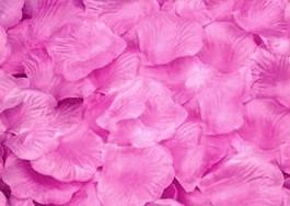 100 PÉTALOS DE ROSA DE TELA 5x5cm (Rosa)
