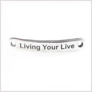 CHAPA ZAMAK BAÑO PLATA Living your Live 40x6.4mm