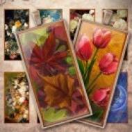 LÁMINA FOTOGRÁFICA CON 24 IMÁGENES 23.5x47.8mm Floral