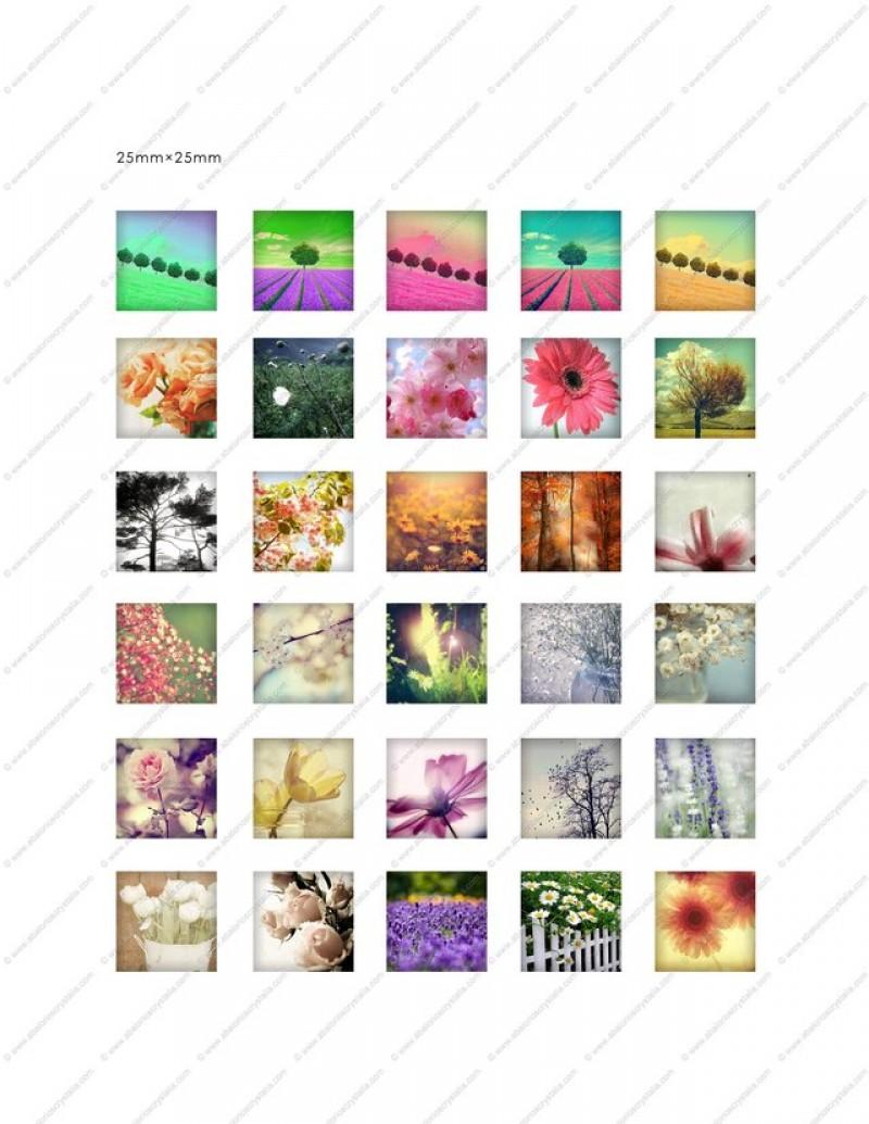 LÁMINA CON 30 IMÁGENES 25x25mm Flores 2